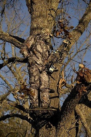 Choosing The Right Tree Stands For BowHunting