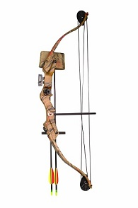 Arrow Precision Stag Youth Archery Recurve Compound Set