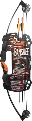 Barnett Bar Banshee Int New 1075 banshee Intermediate Compound Bow