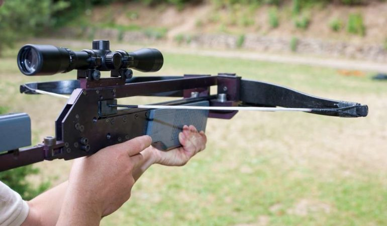 Best Inexpensive Crossbow