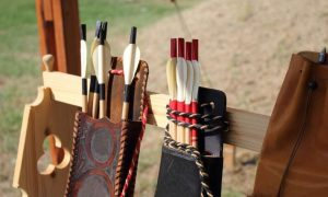 Best Vanes For Crossbow Bolts