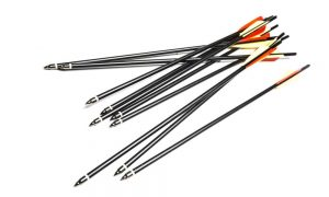 The Best Crossbow Broadheads for Turkey Hunting