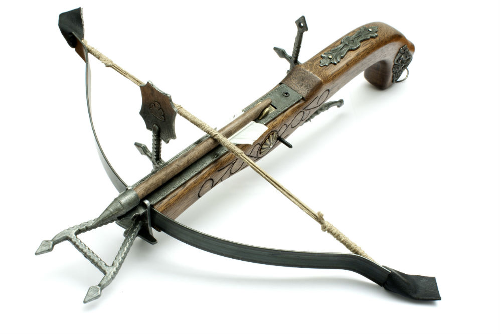 Best Crossbow Broadheads for Beginners and Pro Hunters